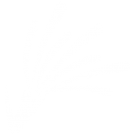 Icon-RFoG