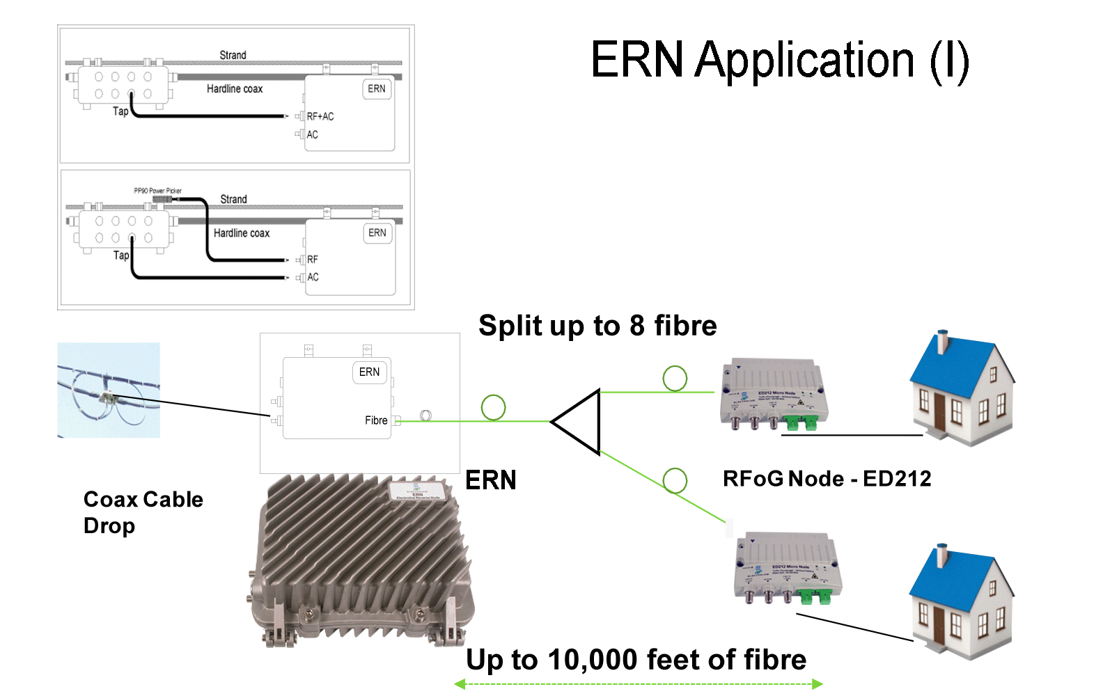 ERN-application-1