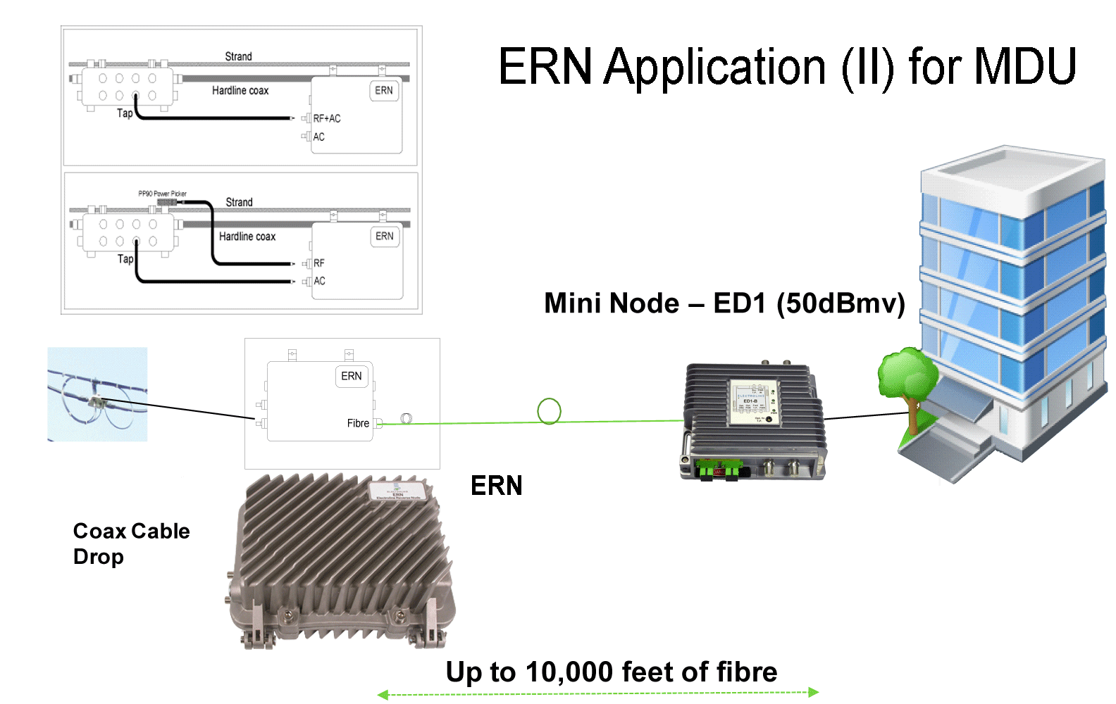 ERN-application-2